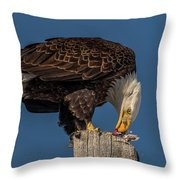Bald Eagle Lunch Throw Pillow