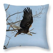 Bald Eagle Makes An Aggressive Dive Throw Pillow