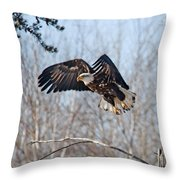 Bald Eagle Near Itasca Throw Pillow