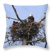 Bald Eagle Nest Throw Pillow