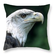 Bald Eagle On Guard Throw Pillow