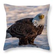 Bald Eagle Over Its Prey Throw Pillow