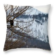 Bald Eagle Perched-signed-#4008 Throw Pillow