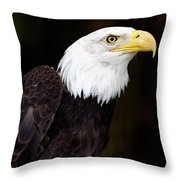 Bald Eagle - Pnw Throw Pillow