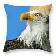 Bald Eagle Profile 4 Throw Pillow