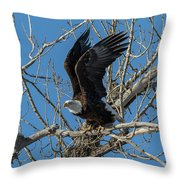Bald Eagle Pushes Off For Launch Throw Pillow
