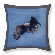 Bald Eagle Ready For A Treat Of Interest Throw Pillow