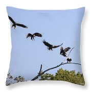 Bald Eagle Sequence  1277 Throw Pillow