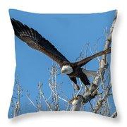 Bald Eagle Shows Its Focus Throw Pillow