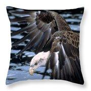 Bald Eagle Strikes Throw Pillow