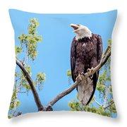Bald Eagle Warning Throw Pillow