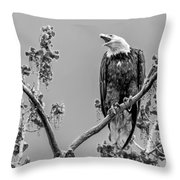 Bald Eagle Warning In Black And White Throw Pillow