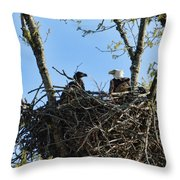 Bald Eagle With Chick In Nest 031520169849 Throw Pillow