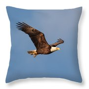 Bald Eagle With Fish 031520169640 Throw Pillow