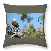 Bald Eagle With Nestling Throw Pillow