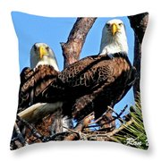 Bald Eagles In Nest Throw Pillow
