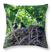 Bald Eaglet's 5 Wks 2 Throw Pillow
