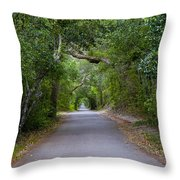 Bald Head Island Study 5 Throw Pillow