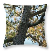 Bald Head Tree Throw Pillow