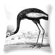 Balearic Crane Throw Pillow