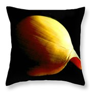 Baler Shell Throw Pillow
