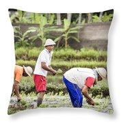 Bali Farming Throw Pillow