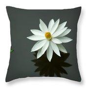 Bali Flower Throw Pillow