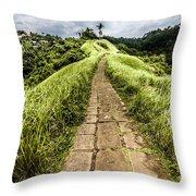 Bali Landscape 4 Throw Pillow