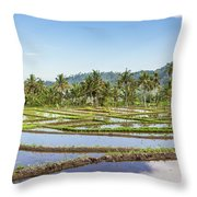 Bali Rice Paddies Throw Pillow