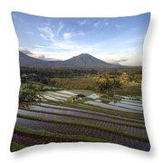 Bali Terrace Rice Field Throw Pillow