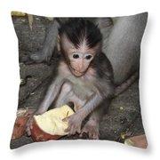 Balinese Baby Monkey Eating Throw Pillow