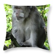 Balinese Monkey In Tree Throw Pillow