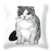 Ball Of Furry Fun Throw Pillow