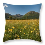 Ballachulish Throw Pillow