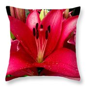 Ballerina Lily Throw Pillow