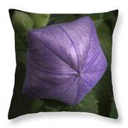 Balloon Flower Throw Pillow