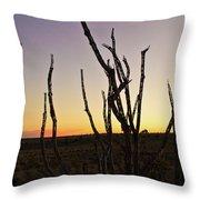 Ballooning At Sunset Throw Pillow