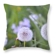 Balls Of Seed Throw Pillow