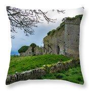 Ballyboggan Abbey, Co. Meath Throw Pillow