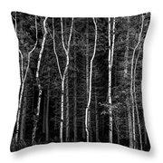 Ballysallagh Forest Mono Throw Pillow