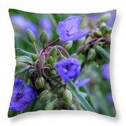Balmy Blue Throw Pillow