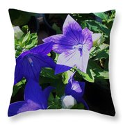 Baloon Flower Throw Pillow