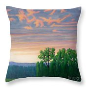 Balsa Road Throw Pillow