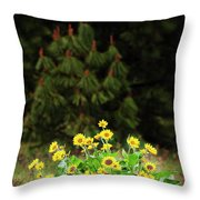 Balsamroot And Evergreen Throw Pillow
