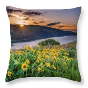 Balsamroot At Sunrise Throw Pillow