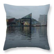 Baltimore Harbor Reflection Throw Pillow