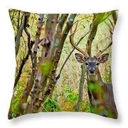Bambi's Father Throw Pillow