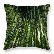 Bamboo 01 Throw Pillow