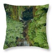 100837-bamboo And Ferns Creek  Throw Pillow