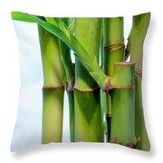 Bamboo And Sky Throw Pillow